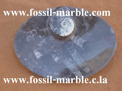 fountain tables sinks decoration fossilized marble marrakech rissani morocco (31) (fontaine ourika) Tags: fountain decoration morocco tables marrakech marble sinks fossilized rissani