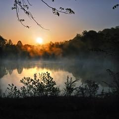 Morning Mist (Sky Noir) Tags: blue trees sky orange mist lake nature water silhouette fog sunrise reflections landscape photography dawn spring pond noir quiet peaceful tranquility serenity daybreak mkd bybilldickinsonskynoircom