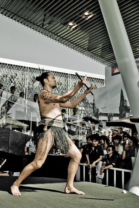 EXPO 2010; New Zealand