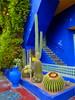 Jardin Majorelle, Marrakech. (elsa11) Tags: garden jardin morocco ashes maroc marrakech majorelle marrakesh marokko jardinbotanique yvessaintlaurent jardinmajorelle majorellegarden pierrebergé