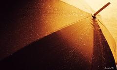 Laisser couler la pluie. Let's the rain flow (Amiela40) Tags: light inspiration rain umbrella lumire pluie parapluie platinumheartaward photoquebec flickraward lemondemerveilleuxdelaphoto flickraward5 whaticallart