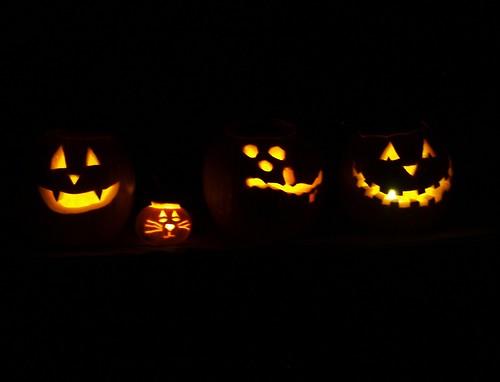 Pumpkins 037