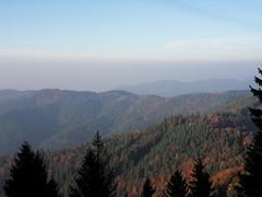 Automne en Forêt Noire