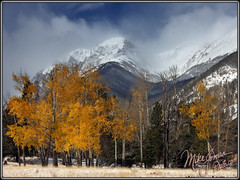 Fall Snow (MikeJonesPhoto) Tags: nature landscape colorado photographer scenic professional co rmnp 1010 2807 mikejonesphoto smithsouthwestern wwwmikejonesphotocom