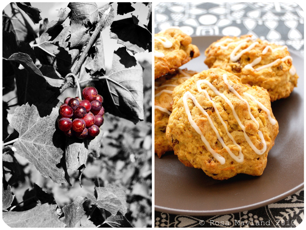 Carrot Cookies Picnik collage 4 bis