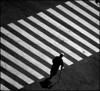 (Pepix2007) Tags: people personas explore zebracrossing urbanscenes pasodezebra outstandingshots escenasurbanas