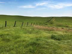 Infinity (Rural Roads Photography) Tags: fence prairie greengrass bluesky oklahoma iphone