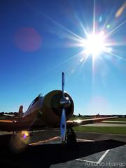 T-6 (Antônio A. Huergo de Carvalho) Tags: north american northamerican t6 at6 t6g texan prteb aviation aircraft airplane aviação avião sun sol sky céu shine shiny brilho world mundo contrast light luz dark art foto photo