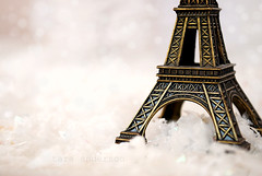 winter at the tower (Tara Anderson) Tags: winter tower statue eiffel