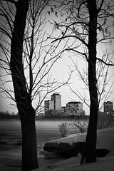 Sister City (Justinvl) Tags: longexposure winter blackandwhite snow ottawa nik ottawariver silverefex