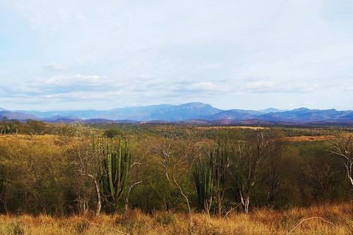 Ranch outside of Alamos with view looking toward Copper Canyon area by robyn tinus----