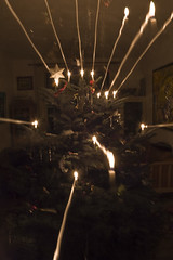 Rays of light (Mirovich) Tags: christmas tree birds denmark nikon d70 træ christmastree ornaments jul danmark 2009 roskilde juletræ pynt fulge normangran