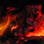 25.12.2009 022 thumbnail