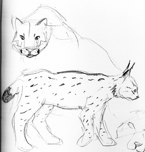 sketch01_f