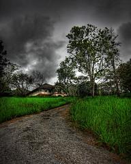 the house ... (Mat Padin) Tags: old house tree green grass town scenery hill creepy malaysia lama kuantan pahang rumah bukit sungai pokok cludy lembing rumput mendung