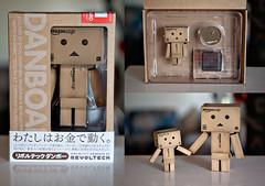 Danbos Arrive! (disneymike) Tags: california toy japanese amazon nikon riverside manga cardboard amazoncom nikkor figurine d3 yotsuba danbo revoltech 60mmf28gmicro danboard minidanbo amazoncomjp