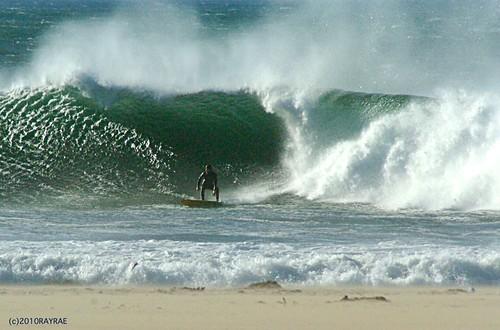 Venice Breakwater Surf  1-14-10