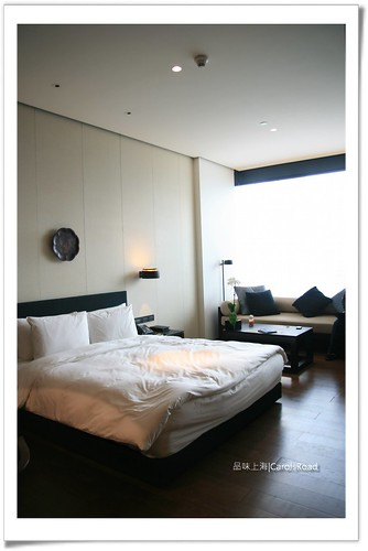 2010-01-16 Shanghai 09 005R