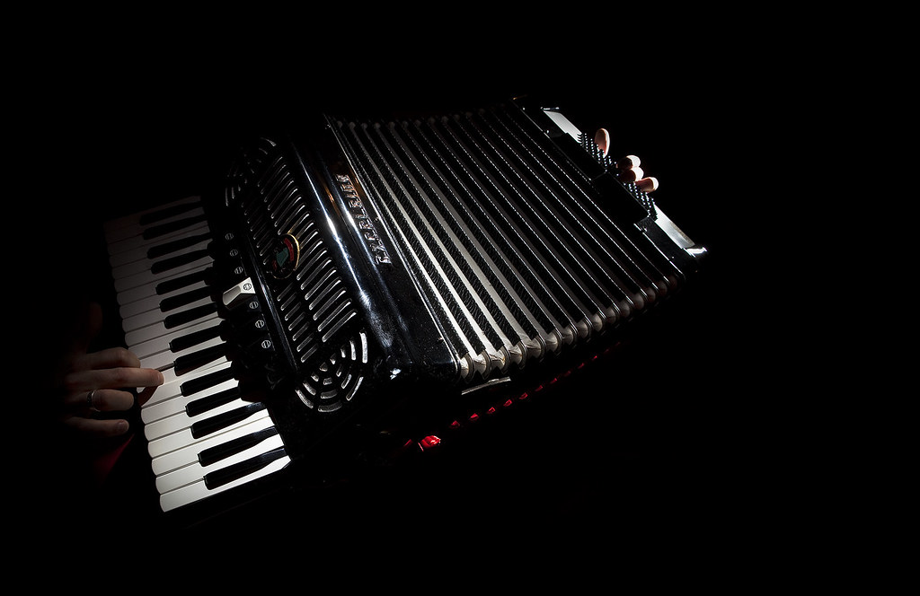 20/365: Squeezebox