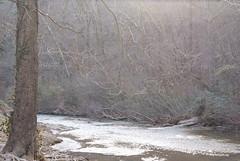 DSC00529 (partyharty_23) Tags: park hot water waterfall rocks ar springs gorge arkansas hotsprings gulpha