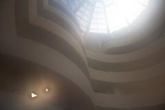 Guggenheim mist