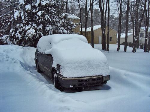 Petey After Snow
