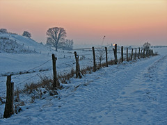 Frozen country (RainerSchuetz) Tags: winter sunset snow tree fence landscape sundown meadow bluehour carttrack abigfave fieldpath artofimages bestcapturesaoi yourwonderland bestofmywinners
