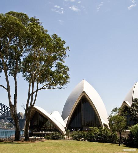 Sydney Opera House from the Botanical Garden