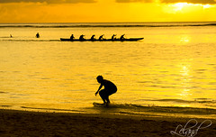 Let's Skimboarding [Explored] (Lel4nd) Tags: shadow beach water silhouette yellow explore skimboarding guam shadown explored