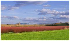 De colores se visten los campos (miguelangelortega) Tags: ltytr1