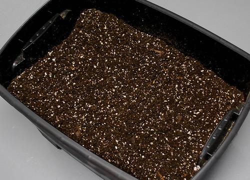 soil block mix