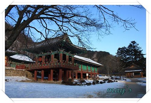 韓國之旅 639