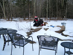 Our Fire Pit -- Bears Included (Sarah_Ackerman) Tags: mountain snow newyork ski cold skiing upstate skitrip windham lifts