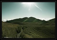 pulag mountain view