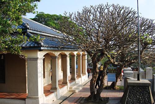 台南黑面琵鷺GO-2010020362