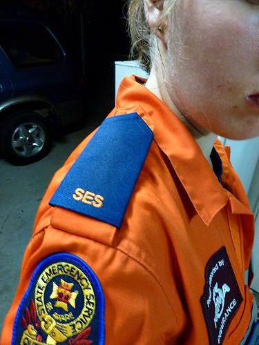 Back in the Orange, 205/365