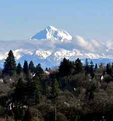 Mt. Hood, OR (Eve'sNature) Tags: snow mountains nature oregon scenic mthood wilderness