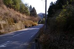 大芦高原への坂