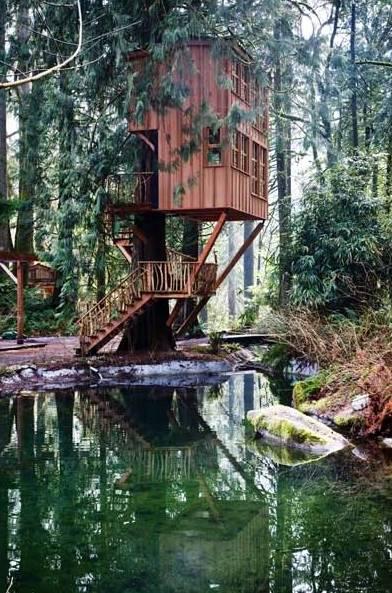 treehousepoint3