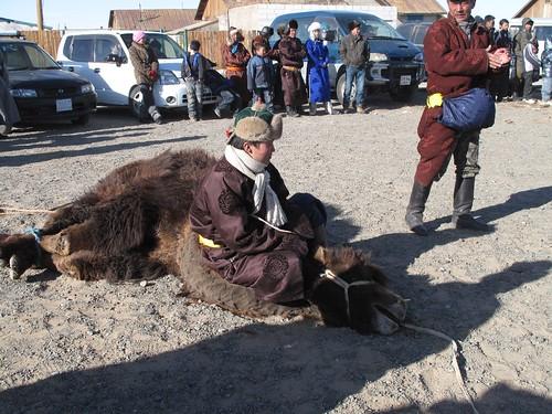 camel seat