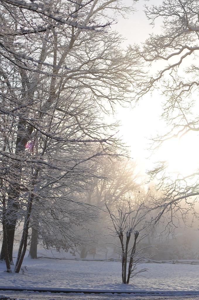 feb13_49