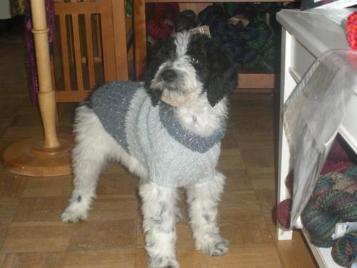 Roxyandsweater