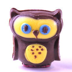 Chocolate Owl