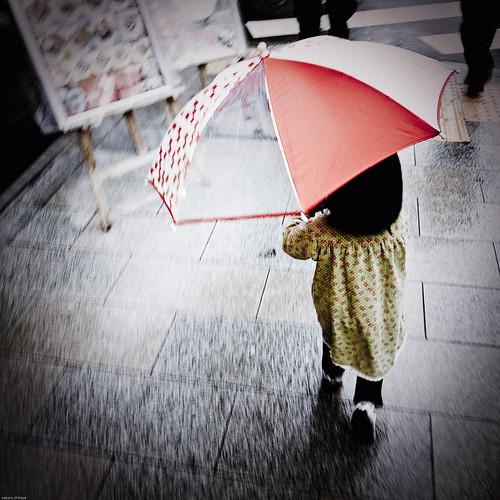 11221 : rainy rainy rainy
