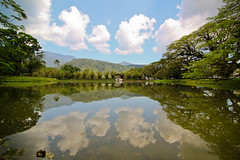 I caught this-Taiping Lake Garden (Lohb) Tags: travel lake reflection canon mirror day sunny tokina malaysia taiping sunnyday perak 500d taipinglakegarden 1116mm