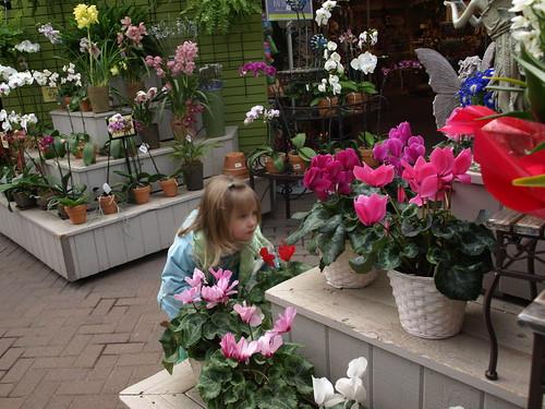 flowershop 041