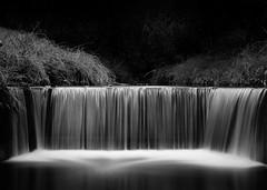 "My ""Tree* Movie"" (cah_1) Tags: longexposure creek walnutcreek urbanwaterfall canonef50mmf14usm ndfilter neutraldensity canoneos50d stormrunoff itscalifornia treemovie"