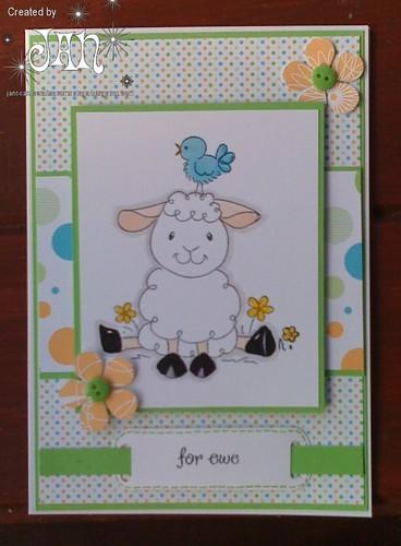 For Ewe