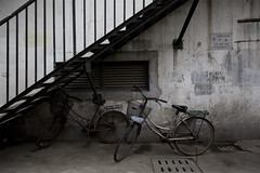 (arnd Dewald) Tags: china bicycle wall stairs graffiti shanghai wand treppe jingan   fahrrad  wallscape arndalarm zhnggu  img9319e05plv7h51klein