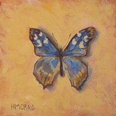 HMCraig-Turquoise-Smokey-Butterfly